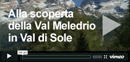 Discovering Val Meledrio in Val di Sole